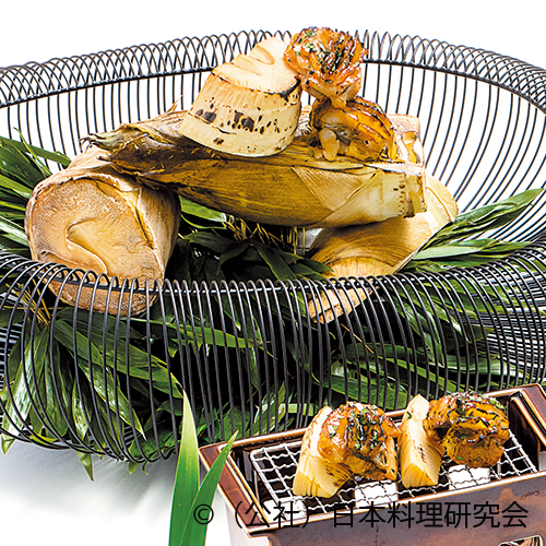 焼筍、鮎魚女木の芽焼